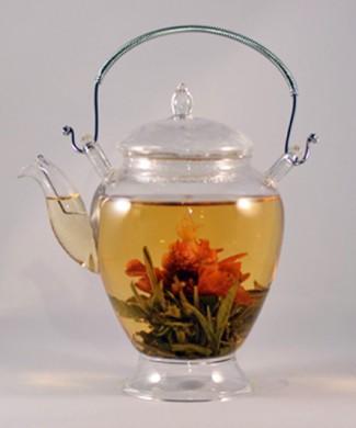 41708-Glass-Teapot