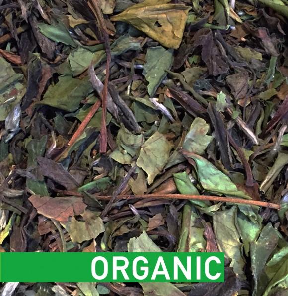 433-Pai Mu Tan White Tea