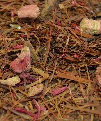 535-lapacho-rhubard-hebden-tea