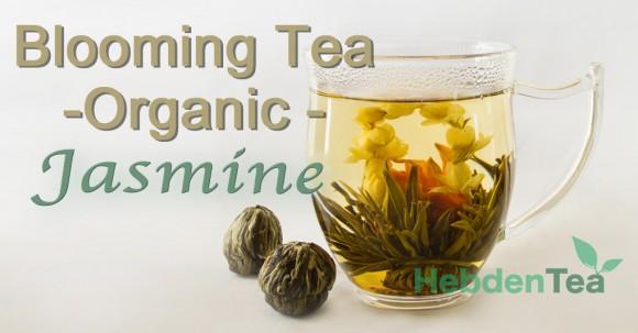 Blooming Tea Jasmine Hebden Tea
