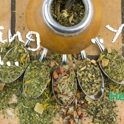 Fasting with Yerba Mate